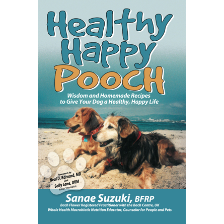 hhp-book-front-cover
